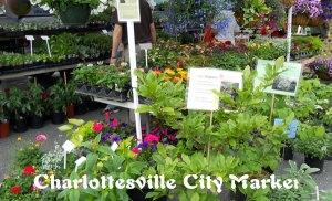 CityMarket_2012-1