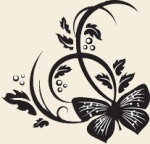 blackbutterfly-tanbg