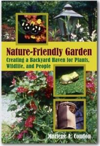 NFG-book
